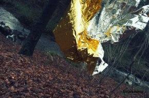 artprojectbrockmann golden silver reign